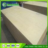 Prima Bintangor / Okume, abedul blanco de madera contrachapada de 18 mm de pino Shutterply para Muebles