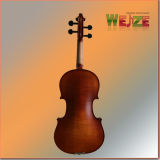 Colore antico medio Flamed Violin