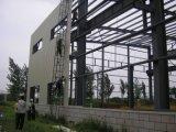 Costruzione dell'acciaio del magazzino della struttura d'acciaio di disegno