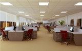 Qualité et compartiment de bureau et poste de travail personnalisés bon marché (SZ-WS129)