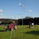 Small Home를 위한 바람 Turbine 2000W Wind Power