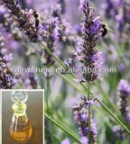 Natürliches reines Lavendelöl