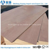 Núcleo de madera/Bintangor Okume de muebles de madera contrachapada comercial