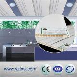 Deux modèles dans un panneau de plafond de PVC