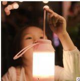 Milchflasche-Form-bewegliches im Freiennachtlicht für das Kampieren