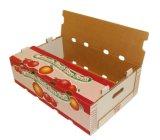 Rectángulo del cartón del embalaje de las verduras frescas de las bandejas de la cartulina acanalada