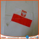 Doppia bandierina laterale su ordinazione dell'automobile del PVC di stampa