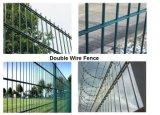 Doppio recinto di filo metallico/rete fissa superiore del reticolato di saldatura figura rotonda