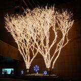 정원 훈장을%s 크리스마스 바닷가 야자수 빛 LED 끈 빛