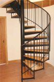 Escaleras modificadas para requisitos particulares fábrica del espiral del bajo costo de la casa para la venta en Filipinas
