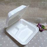 Der biodegradierbare Zuckerrohr-Faser-Nahrungsmittelbehälter nehmen Mittagessen-Kästen weg