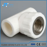 Pipe élevée de l'eau chaude et froide PPR, tube de plastique de conduite d'eau de l'ajustage de précision de pipe de PPR PPR