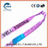 Polyester, das ringsum Riemen mit Standard En1492-2 anhebt