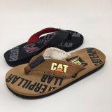 人の靴--エヴァおよびTPR人の靴のための快適な浜の双安定回路