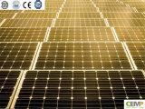 Comitato solare monocristallino 285 di alto livello con basso costo