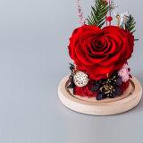 Bevordering Bewaarde Bloem in Glas voor de Gift van de Valentijnskaart