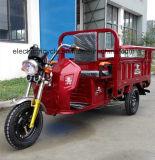 المتأخّر مصنع عمليّة بيع كهربائيّة 3 عجلة درّاجة ناريّة لأنّ شحن أو مسافر