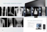 Dg3650 Digital de alta frecuencia del sistema de radiografía de rayos X