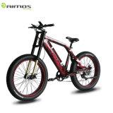 48V 1000W Schnee-elektrisches fettes Gummireifen-Fahrrad-elektrisches Motorrad mit Bildschirmanzeige USB-LCD