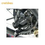 Potente motor sin escobillas Fat Bicicleta eléctrica