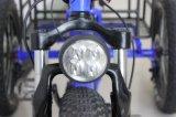 페달을%s 가진 500W 전기 비용을 부과 전기 세발자전거