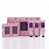 Kit de recorrido púrpura fresco y lindo del perfume