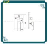 Mixer van uitstekende kwaliteit van de Douche van de Badkamers van het Handvat van de Plaat van het Roestvrij staal de Enige