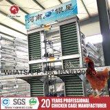 Câbles d'alimentation et buveurs de poulet avec la cage de couche de treillis métallique pour la ferme de poulet