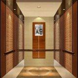 Vvvfおよびセリウムが付いているFujizy 1.0m/S 800kgの安いホームエレベーターは承認した
