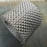 Rete metallica architettonica decorativa dell'acciaio inossidabile/maglia parete divisoria