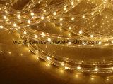 indicatore luminoso della corda del kit LED della bolla di 220V 120V 1m (SMD3528- 60LED)