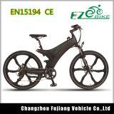 Los neumáticos de 29 pulgadas bicicleta eléctrica con motor de 250W