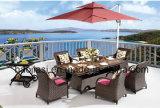 옥외 /Rattan/정원은/안뜰 호텔 가구 등나무 의자 & 테이블 놓았다 (HS1629AC & HS 7617DT & HS 5003)