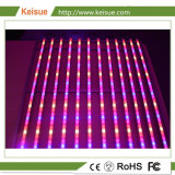 Keisue crecen las plantas de interior de la luz de LED