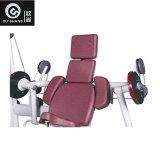 De speld Geladen Apparatuur van de Geschiktheid van de Gymnastiek van de Machine Sm8008 van de Krul van Bicepsen