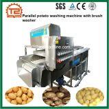 Параллельно картофеля стиральная машина с шайбой щетки вращающегося пылесборника