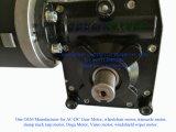 motor de reducción peatonal eléctrico del engranaje de gusano del carro de paleta de 12V 24V 300W