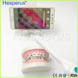 Cámara intraoral fácil portable dental de WiFi HD del uso para el IOS y el sistema androide