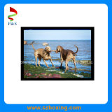 pantalla de 8.0-Inch IPS 1024 (RGB) X768p LCD con ángulo de visión amplio y respuesta rápida