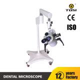 De mondelinge Werkende Fabrikant van de Apparatuur van de Microscoop Tand