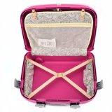 Bubuleの新しいデザイン5部分の一定の中国の工場トラック旅行トロリー荷物袋のスーツケースのMaletaセット