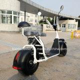 Scooter eléctrico off-road neumático Fat 1000W 60V Harley