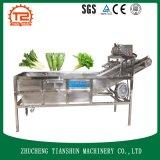 Automatische Gemüsewaschmaschine mit Druck-Unterlegscheibe für das Gemüseaufbereiten