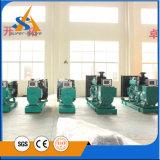 In het groot Diesel van 500 kVA Generator
