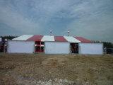 خيمة كبيرة لأنّ خارجيّ حادث ومعرض