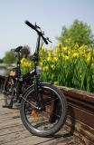 Bicyclette électrique à grande vitesse de grand pouvoir avec le détecteur triple