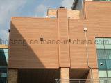 Nuovi rivestimento/comitato decorativi materiali della parete di WPC per Europa & l'America del Nord