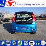 Neues konzipiertes elektrisches Auto für Verkauf