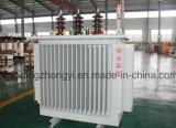 O tipo do petróleo do fornecedor de China intensifica e step-down o transformador da distribuição de potência