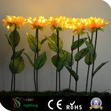 Lumières extérieures de fleur de décoration de Noël